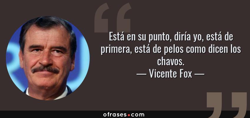 Frases de Vicente Fox - Está en su punto, diría yo, está de primera, está de pelos como dicen los chavos.
