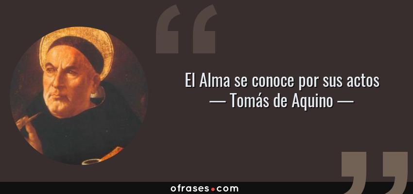 Frases de Tomás de Aquino - El Alma se conoce por sus actos
