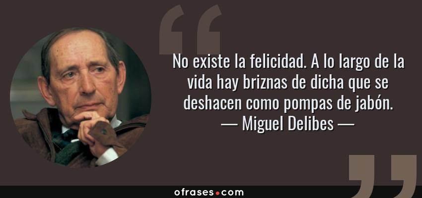 Frases de Miguel Delibes - No existe la felicidad. A lo largo de la vida hay briznas de dicha que se deshacen como pompas de jabón.