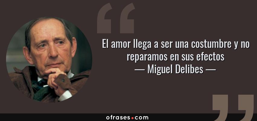 Frases de Miguel Delibes - El amor llega a ser una costumbre y no reparamos en sus efectos
