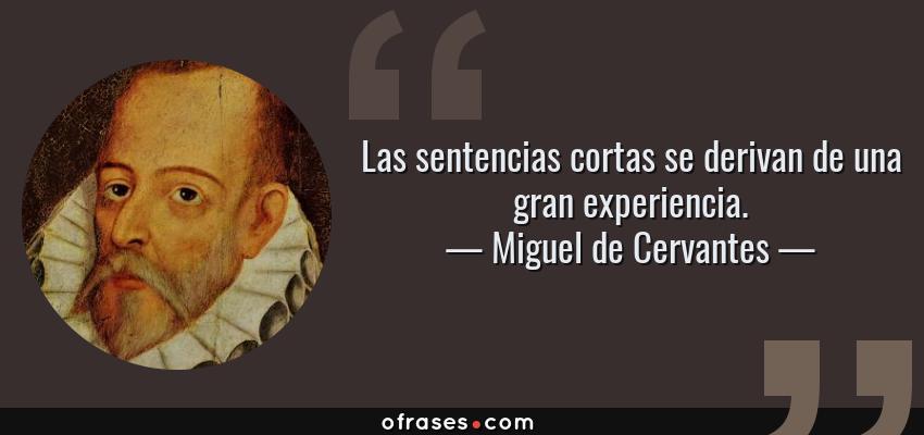 Frases de Miguel de Cervantes - Las sentencias cortas se derivan de una gran experiencia.