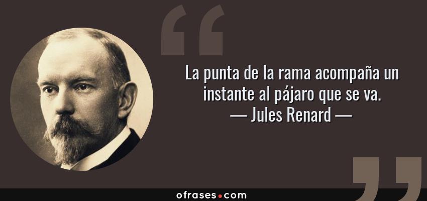 Frases de Jules Renard - La punta de la rama acompaña un instante al pájaro que se va.