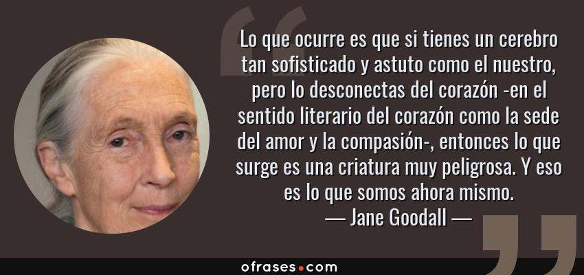Frases de Jane Goodall - Lo que ocurre es que si tienes un cerebro tan sofisticado y astuto como el nuestro, pero lo desconectas del corazón -en el sentido literario del corazón como la sede del amor y la compasión-, entonces lo que surge es una criatura muy peligrosa. Y eso es lo que somos ahora mismo.