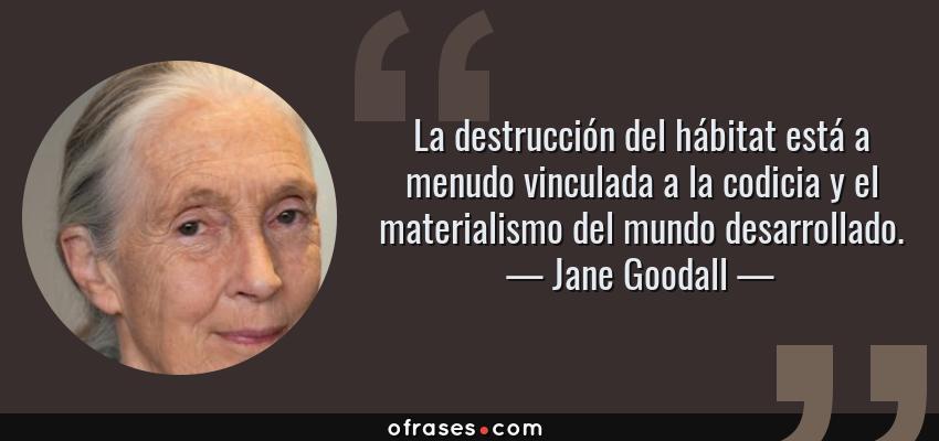 Frases de Jane Goodall - La destrucción del hábitat está a menudo vinculada a la codicia y el materialismo del mundo desarrollado.