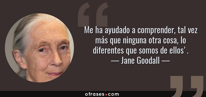 Frases de Jane Goodall - Me ha ayudado a comprender, tal vez más que ninguna otra cosa, lo diferentes que somos de ellos'.