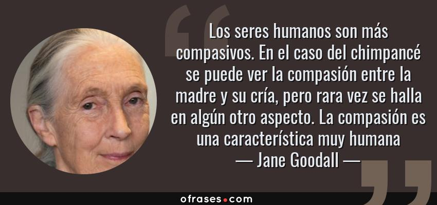 Frases de Jane Goodall - Los seres humanos son más compasivos. En el caso del chimpancé se puede ver la compasión entre la madre y su cría, pero rara vez se halla en algún otro aspecto. La compasión es una característica muy humana