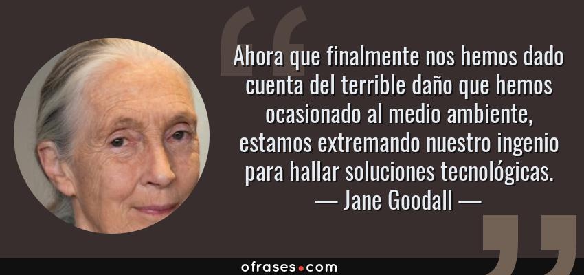 Frases de Jane Goodall - Ahora que finalmente nos hemos dado cuenta del terrible daño que hemos ocasionado al medio ambiente, estamos extremando nuestro ingenio para hallar soluciones tecnológicas.