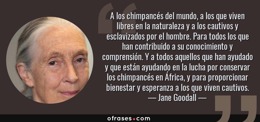 Frases de Jane Goodall - A los chimpancés del mundo, a los que viven libres en la naturaleza y a los cautivos y esclavizados por el hombre. Para todos los que han contribuido a su conocimiento y comprensión. Y a todos aquellos que han ayudado y que están ayudando en la lucha por conservar los chimpancés en África, y para proporcionar bienestar y esperanza a los que viven cautivos.