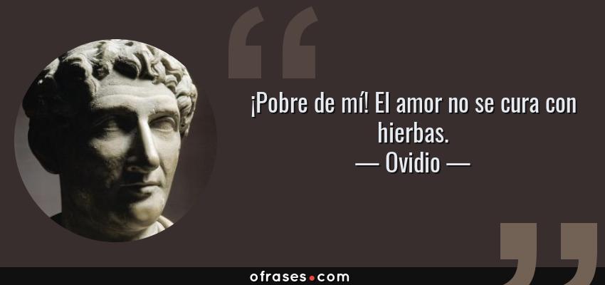 Frases de Ovidio - ¡Pobre de mí! El amor no se cura con hierbas.