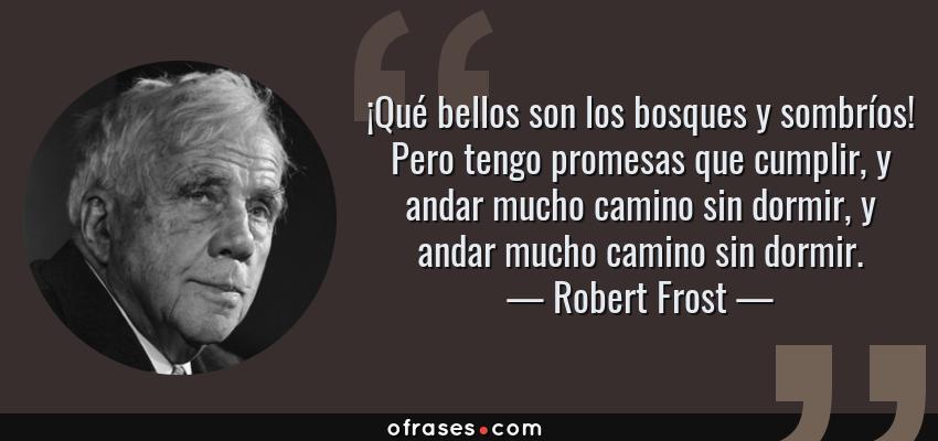 Frases de Robert Frost - ¡Qué bellos son los bosques y sombríos! Pero tengo promesas que cumplir, y andar mucho camino sin dormir, y andar mucho camino sin dormir.
