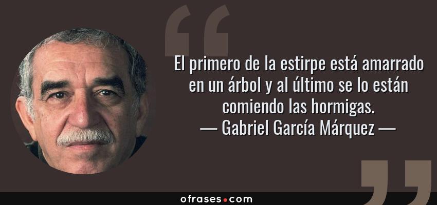 Frases de Gabriel García Márquez - El primero de la estirpe está amarrado en un árbol y al último se lo están comiendo las hormigas.
