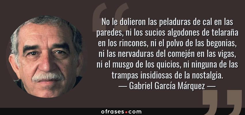 Frases de Gabriel García Márquez - No le dolieron las peladuras de cal en las paredes, ni los sucios algodones de telaraña en los rincones, ni el polvo de las begonias, ni las nervaduras del comején en las vigas, ni el musgo de los quicios, ni ninguna de las trampas insidiosas de la nostalgia.
