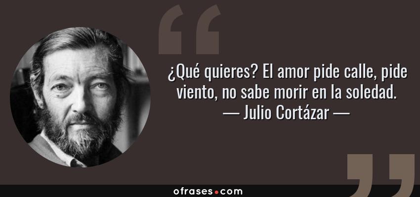 Julio Cortázar Qué Quieres El Amor Pide Calle Pide