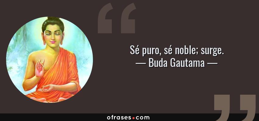 Frases de Buda Gautama - Sé puro, sé noble; surge.