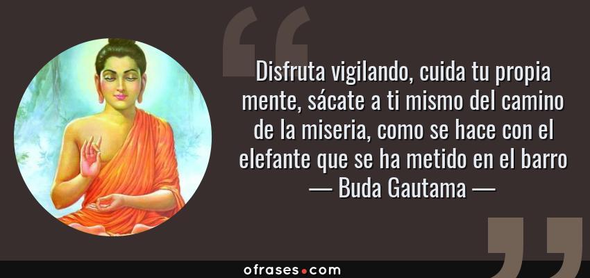 Frases de Buda Gautama - Disfruta vigilando, cuida tu propia mente, sácate a ti mismo del camino de la miseria, como se hace con el elefante que se ha metido en el barro