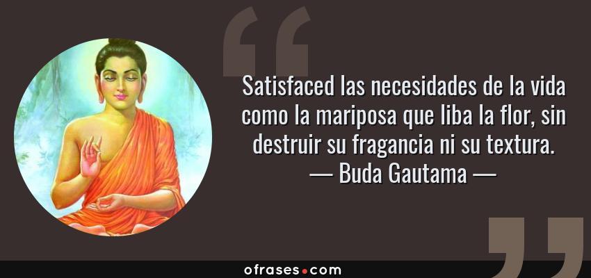Frases de Buda Gautama - Satisfaced las necesidades de la vida como la mariposa que liba la flor, sin destruir su fragancia ni su textura.