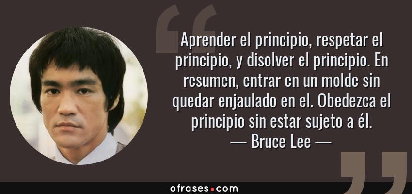 Frases de Bruce Lee - Aprender el principio, respetar el principio, y disolver el principio. En resumen, entrar en un molde sin quedar enjaulado en el. Obedezca el principio sin estar sujeto a él.