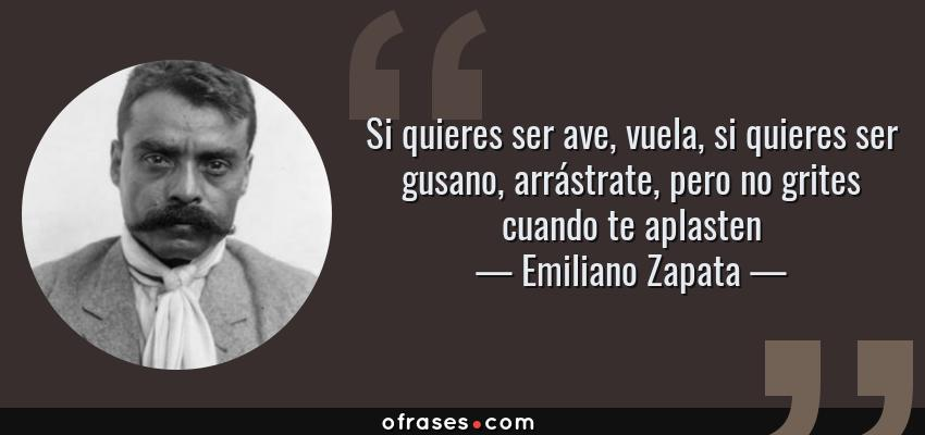 Frases de Emiliano Zapata - Si quieres ser ave, vuela, si quieres ser gusano, arrástrate, pero no grites cuando te aplasten