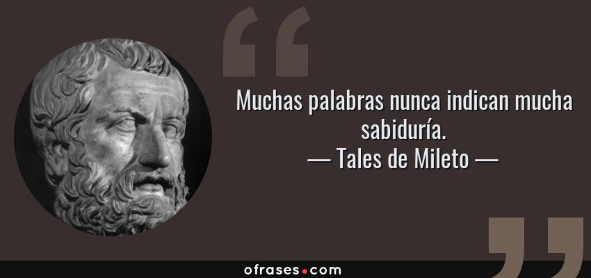 Frases de Tales de Mileto - Muchas palabras nunca indican mucha sabiduría.