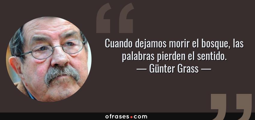 Frases de Günter Grass - Cuando dejamos morir el bosque, las palabras pierden el sentido.