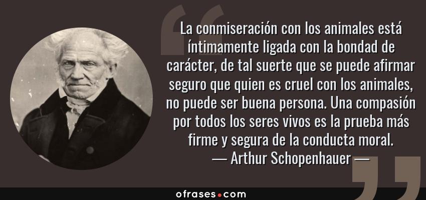 Frases de Arthur Schopenhauer - La conmiseración con los animales está íntimamente ligada con la bondad de carácter, de tal suerte que se puede afirmar seguro que quien es cruel con los animales, no puede ser buena persona. Una compasión por todos los seres vivos es la prueba más firme y segura de la conducta moral.
