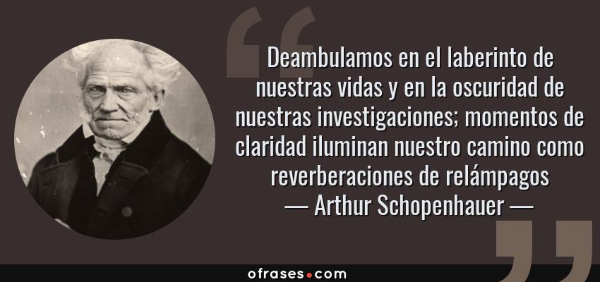 Frases de Arthur Schopenhauer - Deambulamos en el laberinto de nuestras vidas y en la oscuridad de nuestras investigaciones; momentos de claridad iluminan nuestro camino como reverberaciones de relámpagos