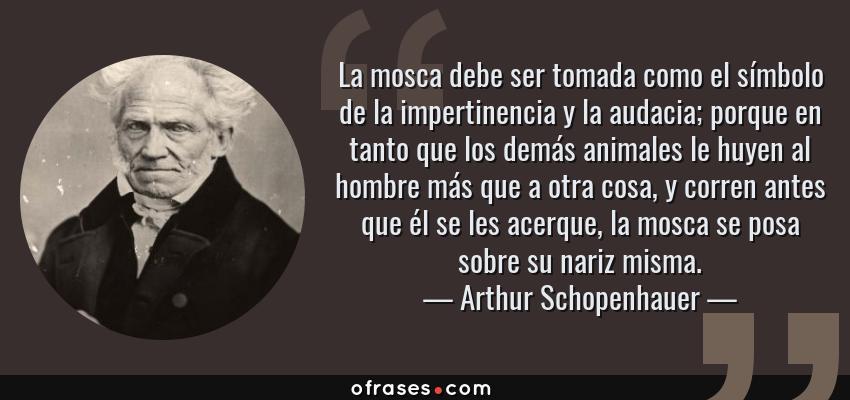 Frases de Arthur Schopenhauer - La mosca debe ser tomada como el símbolo de la impertinencia y la audacia; porque en tanto que los demás animales le huyen al hombre más que a otra cosa, y corren antes que él se les acerque, la mosca se posa sobre su nariz misma.