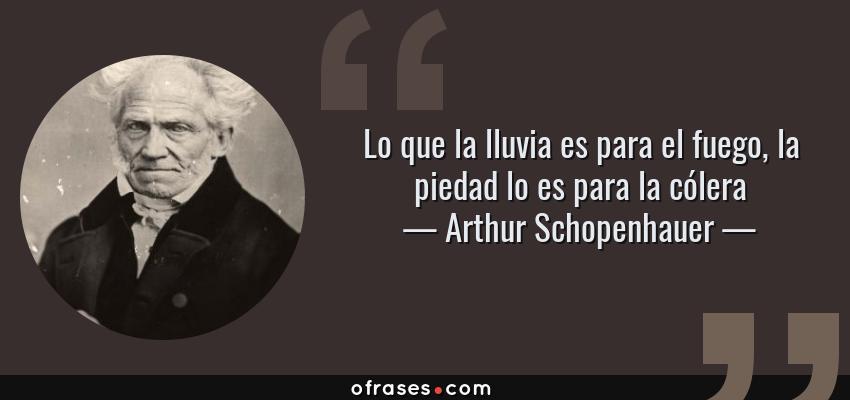 Frases de Arthur Schopenhauer - Lo que la lluvia es para el fuego, la piedad lo es para la cólera