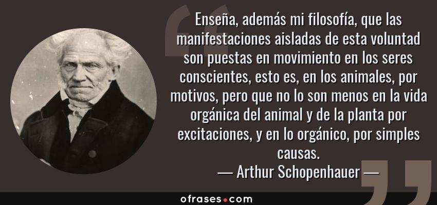 Frases de Arthur Schopenhauer - Enseña, además mi filosofía, que las manifestaciones aisladas de esta voluntad son puestas en movimiento en los seres conscientes, esto es, en los animales, por motivos, pero que no lo son menos en la vida orgánica del animal y de la planta por excitaciones, y en lo orgánico, por simples causas.