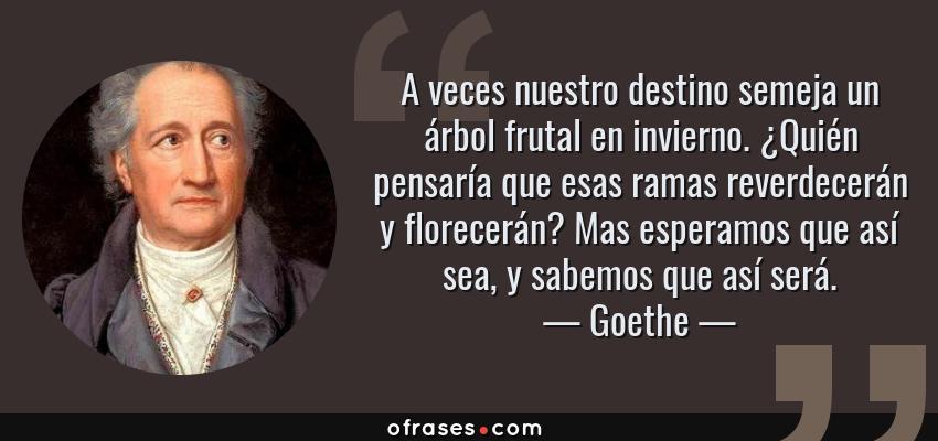 Frases de Goethe - A veces nuestro destino semeja un árbol frutal en invierno. ¿Quién pensaría que esas ramas reverdecerán y florecerán? Mas esperamos que así sea, y sabemos que así será.