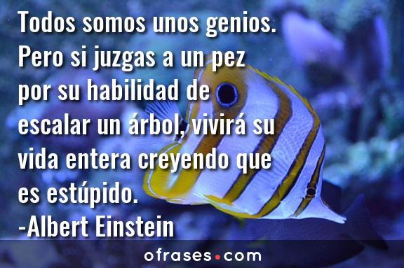 Albert Einstein Todos somos unos genios. Pero si juzgas a un pez por su habilidad de escalar un árbol, vivirá su vida entera creyendo que es estúpido.