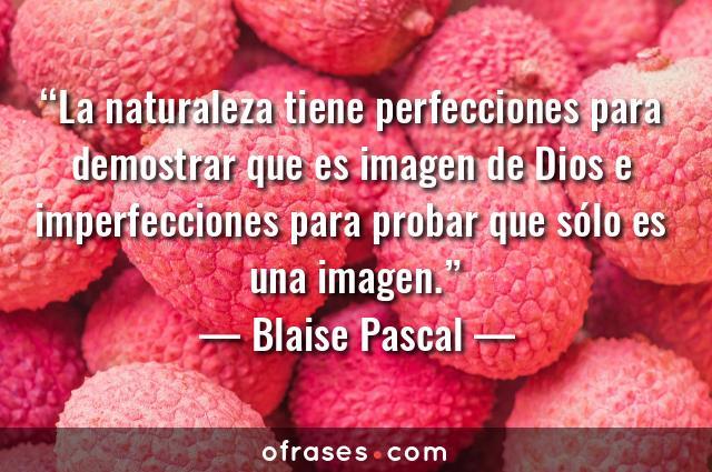 Blaise Pascal La naturaleza tiene perfecciones para demostrar que es imagen de Dios e imperfecciones para probar que sólo es una imagen.