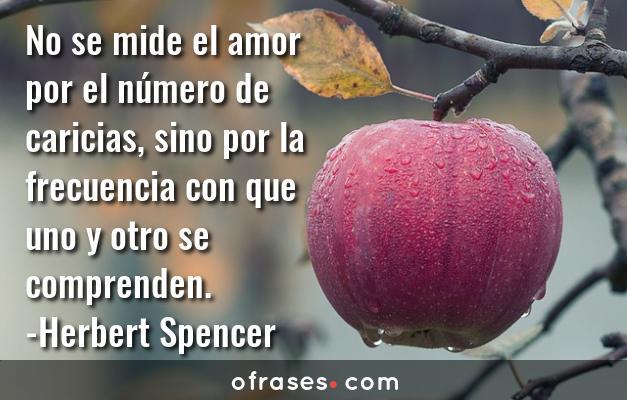 Herbert Spencer No se mide el amor por el número de caricias, sino por la frecuencia con que uno y otro se comprenden.
