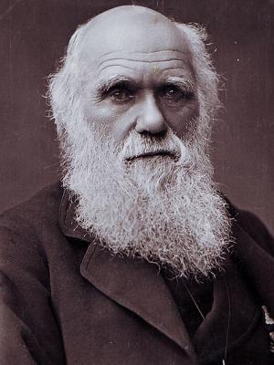 Frases, Imágenes y Biografía de Charles Darwin