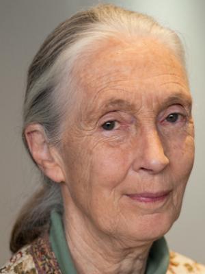 Frases, Imágenes y Biografía de Jane Goodall