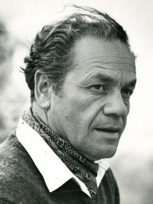 Frases, Imágenes y Biografía de Nicanor Parra